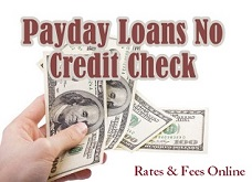 Payday Loans No Credit Check: Same Day Cash Advances